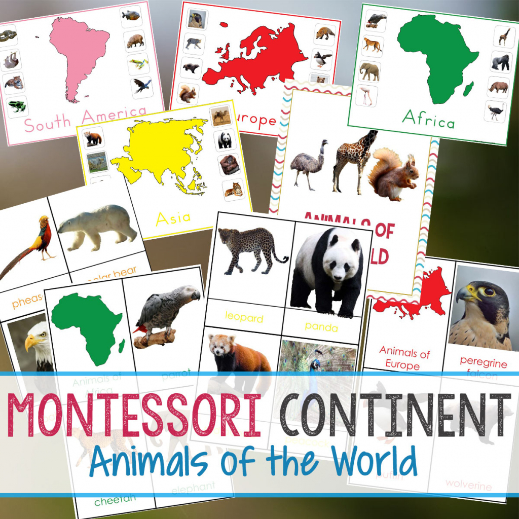 Animals And Continents Printables - Natural Beach Living pertaining to Montessori World Map Free Printable