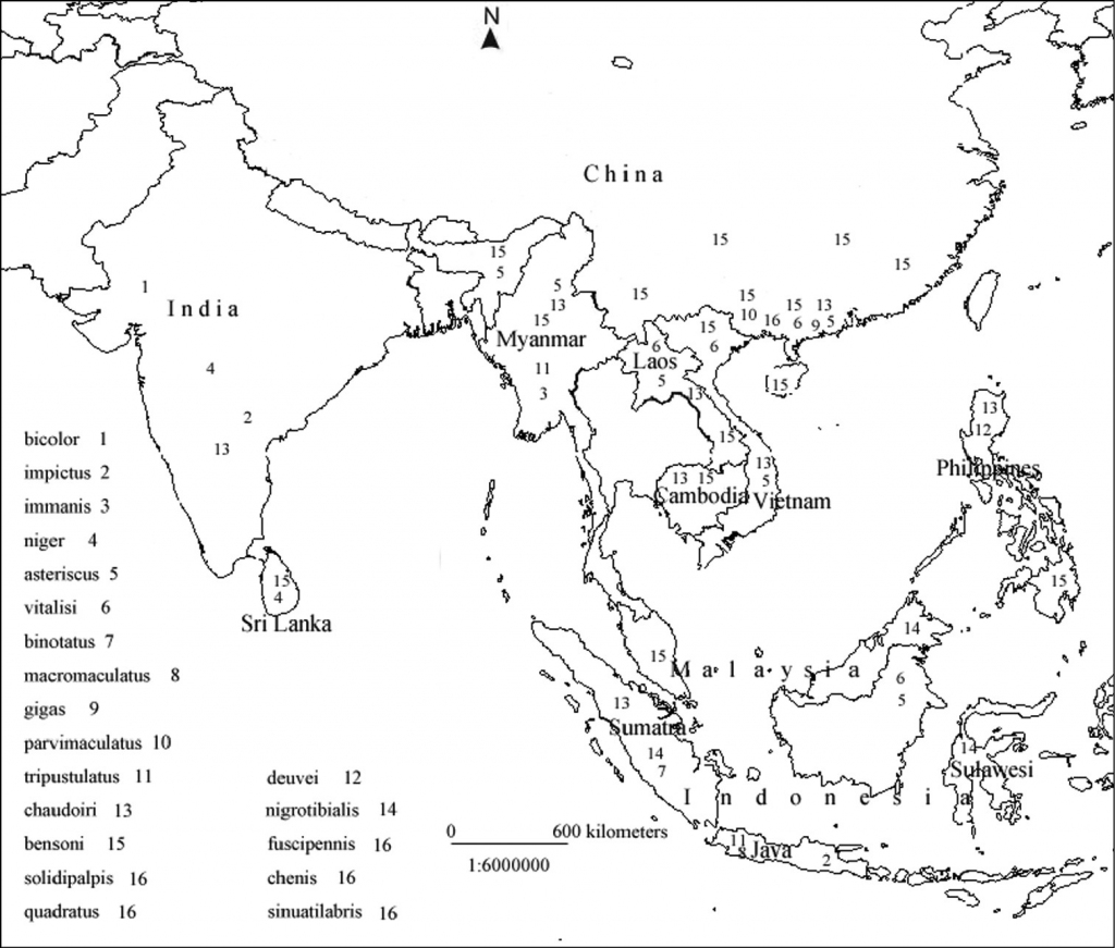 Asia Map Drawing Best Maps Southeast Outline 7 | Globalsupportinitiative throughout Printable Map Of Southeast Asia