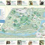 Bronx Zoo   Maplets With Regard To Bronx Zoo Map Printable