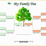 Free Tree Map Templates Of Double Bubble Map Template Printable With Printable Tree Map