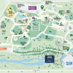 Map Of Bronx Zoo | Download Them And Print Within Bronx Zoo Map Printable