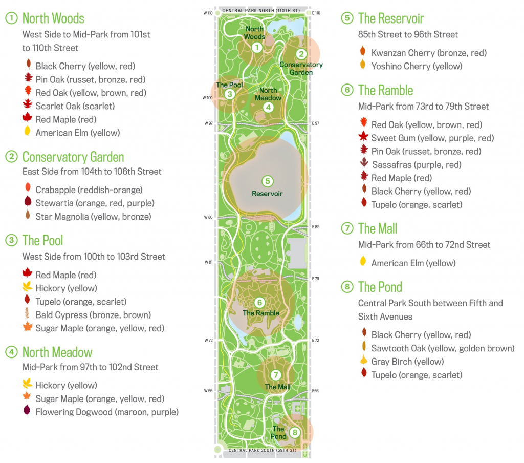 Map Of Central Park New Your City Central Park Zoo Attraction Free with regard to Printable Map Of Central Park Nyc