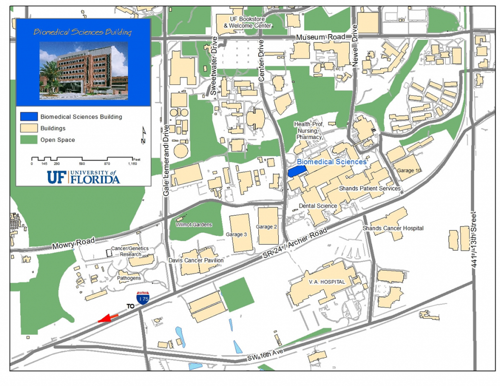 Uf Campus Map (88+ Images In Collection) Page 1 for Uf Campus Map Printable