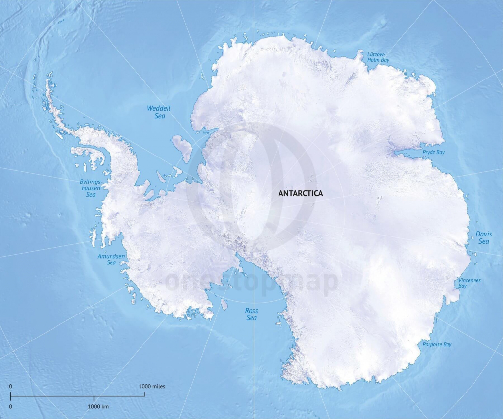Vector Map Antarctica Continent Relief | One Stop Map with Printable Map Of Antarctica